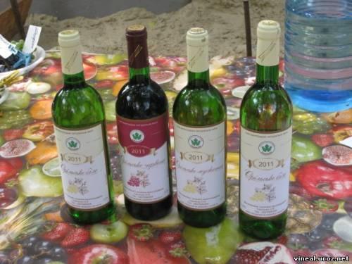 вино,домашнее вино,дегустация вина,виноделие